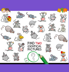 Find two identical mice educational activity vector
