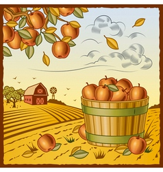 Landscape with apple harvest vector image
