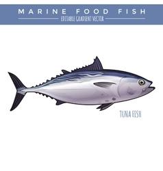 Tuna marine food fish vector