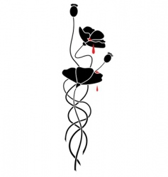 black poppy vector image