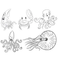 animal outline for sea animals vector image
