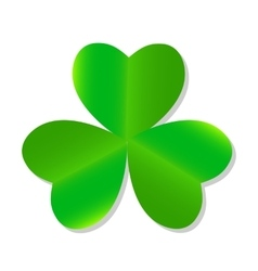 Three Leaf Green Clover vector image