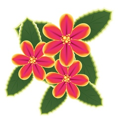 Pink tropical flowers vector