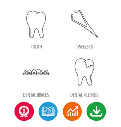 Dental braces fillings and tooth icons vector