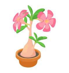 Exotic cactus icon cartoon style vector