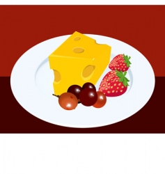 fruits and cheese vector image