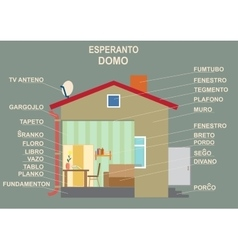 Esperanto the international language The manual vector image