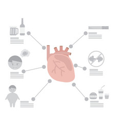 infographic of heart disease factor vector image