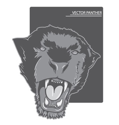 Angry panther vector