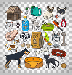 cats and dogs on transparent background vector image vector image