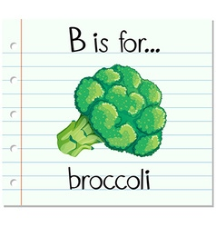 Flashcard letter b is for broccoli vector