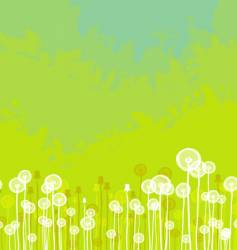 Dandelions background vector