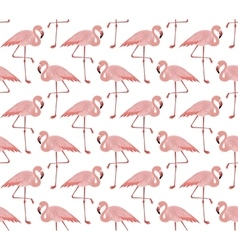 Seamless pattern of pink flamingo vector
