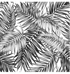 Seamless pattern tropic jungle leaves black white vector
