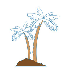 Tropical palms icon vector
