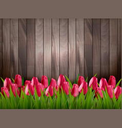 Nature spring background with red tulips on vector