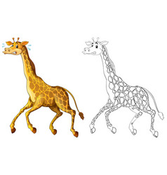 doodle animal for giraffe running vector image