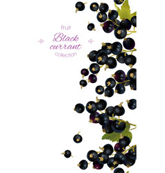 Cherry vertical banner vector