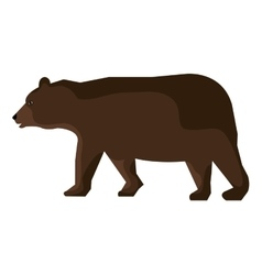 Bear cartoon animal isolated in white vector