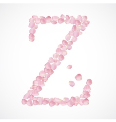 Z letter Alphabet from pink petals of rose vector image
