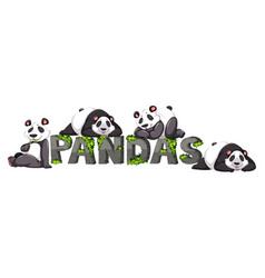 Four pandas by the zoo sign vector