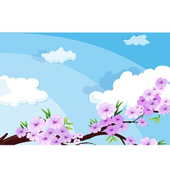 A view of the beautiful sky with clouds vector image vector image