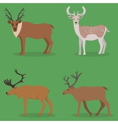 Collection of deer in a flat design vector