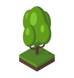 Isometric tree vector image vector image