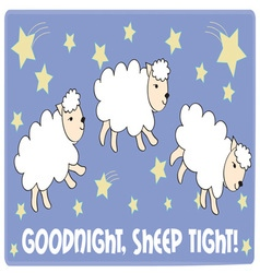 Sheep tight vector