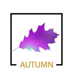 Text autumn on leaf background vector