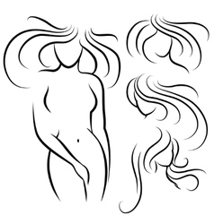 Elegant woman silhouette and hairstyles vector image