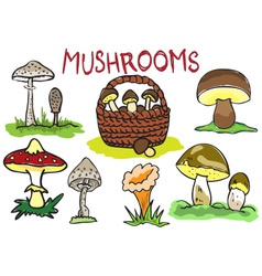 several kinds of mushrooms vector image vector image