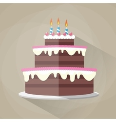 Chocolate birthday cake icon vector image vector image