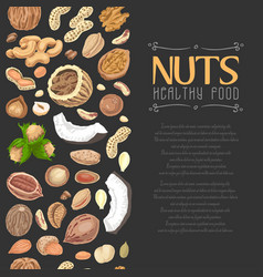 vertical seamless background with colored nuts and vector image