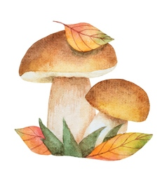 Watercolor mushrooms with autumn leaves vector image