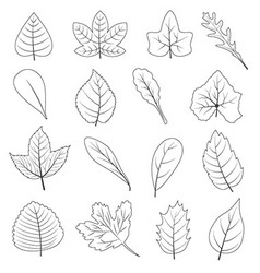 Black and white leaves shape icon set vector