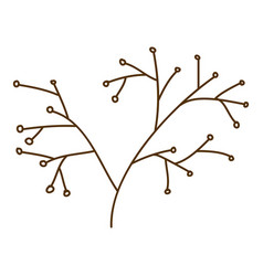 Brown contour graphic of stem with seeds vector