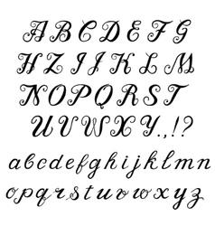 Calligraphy handwritten alphabet vector