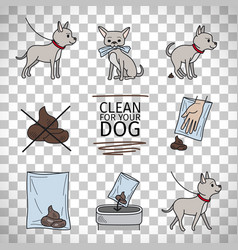 Clean up after your dog information vector