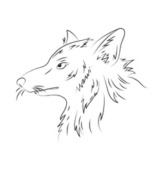 hand drawn pencil of wolf vector image vector image