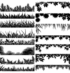 plant borders vector image vector image
