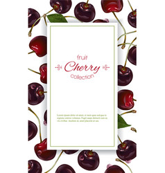 Cherry vertical banners vector