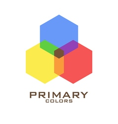 Primary color logo design template vector