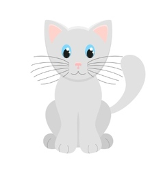 Cute Light Grey Kitten vector image