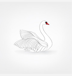 white bird isolated over white background vector image vector image