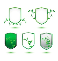 Insulated shield banner with green leaves vector