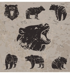 Set of different bears 3 vector