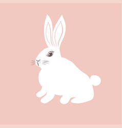 Cute white bunny on pink background vector