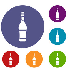 design bottle icons set vector image