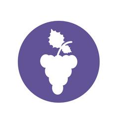 Grape fruit food healthy icon vector